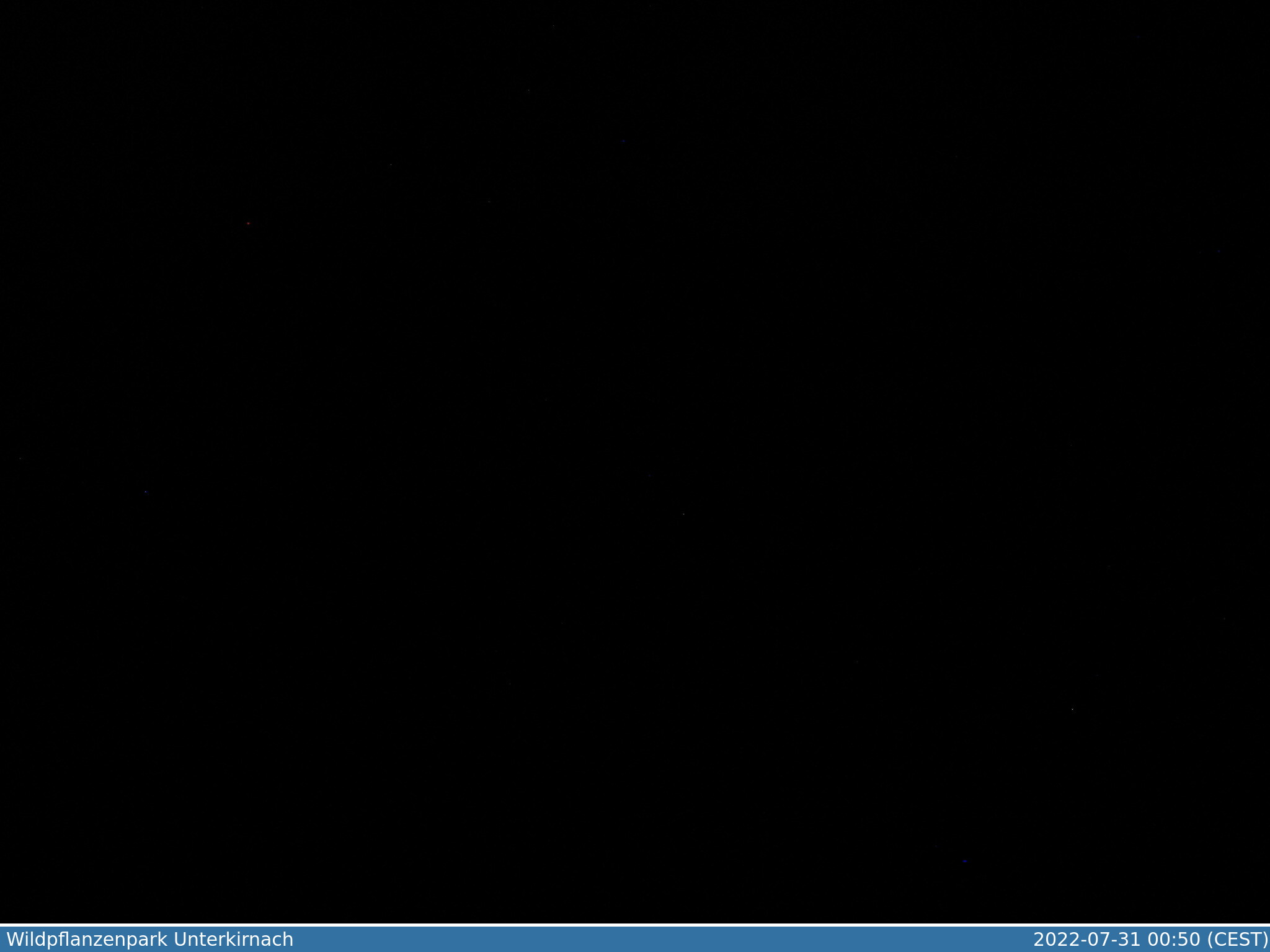 Webcam 78089 Unterkirnach Wildpflanzenpark